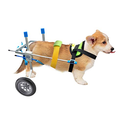 Hund Rollstuhl, Hundegehilfe Rollwagen,Hinterer Stützrollstuhl 2 Räder Hunderollstuhl Behinderte Hund Gehweg Auto für Hinterbeine für Haustiere Rehabilitation für kleine Hunde
