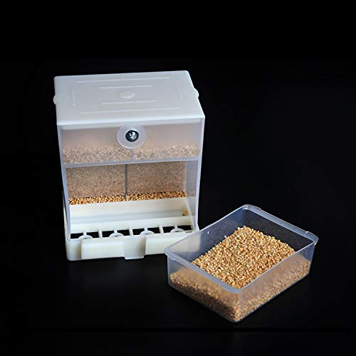 automatic bird seed dispenser - 2