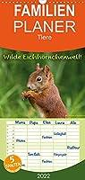 Wilde Eichhoernchenwelt! - Familienplaner hoch (Wandkalender 2022 , 21 cm x 45 cm, hoch): Ungewoehnliche Einblicke in das wilde Leben der Eichhoernchen. (Monatskalender, 14 Seiten )