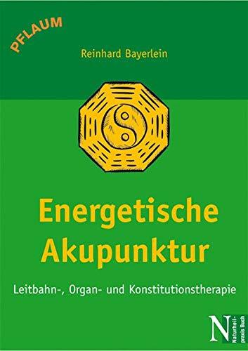 Energetische Akupunktur: Leitbahn-, Organ- und Konstitutionstherapie
