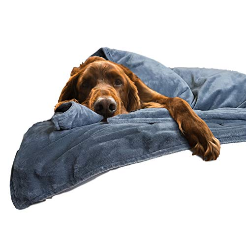 Canine Coddler The Original Anti Anxiety Weighted Dog Blanket for Stress Relief | Compression Wrap with Premium Washable Cover | Great for Separation Anxiety | for Dogs Over 50 Lbs