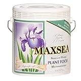 Maxsea HGC722255 All Purpose 16-16-16 Hydroponic Nutrient Fertilizer, 6 lb, Brown/A