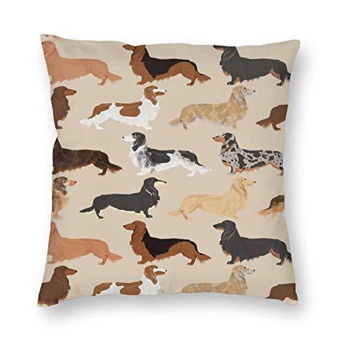 surce Kussenslopen Lange Haren Dachshunds Honden Huisdier Hond Leuke Huisdieren Weenie Dogsausage Hond Huisdieren Hond voor Slaapbank slaapkamer WoonkamerTwee Zijden Drukken 18x18 inch