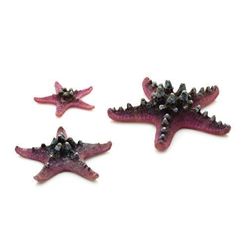 biOrb 46136.0 Starfish Set 3 Pink Aquariums