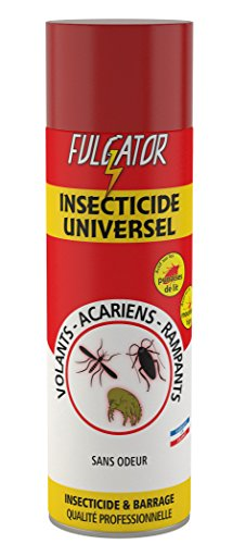 Fulgator - Insecticide Barrage - Insecticide Universel - Tous Insectes / sans Odeur - 500 ml