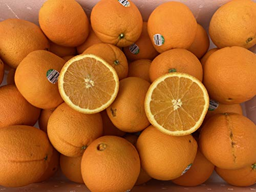 オレンジ 約4kg ネーブルオレンジ カルフォルニア産 オーストラリア産 ベジップル特選