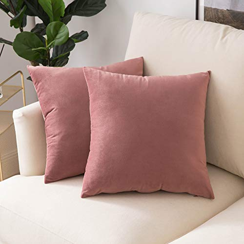 Woaboy Pack of 2 Velvet Throw Pillow Covers Decorative Pillowcases Solid Soft Cushion Covers Pillow Case Square Cojines for Couch Living Room Sofa Bedroom Car 18x18 inch 45x45cm Jam