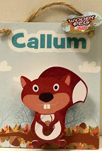 Callum - Kinder Personalisiert Magnetisch Organizer Peg - Put auf der Kühlschrank oder Aufhängen auf EIN Tür