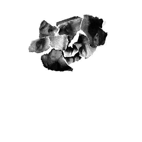 Things Break (feat. Nelson Bandela & Dvnt) [Explicit]
