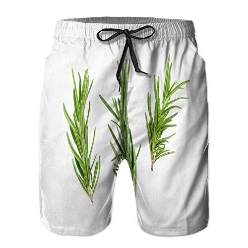 WENLISAN Men's Swim Trunks,Rosemary Leaf Herbal Spices Isolated Over,Quick Dry Short Pants with Pockets Beach Swimming Trunks XL