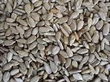 Maltbys Stores Graines de tournesol pour oiseaux 22,68 kg