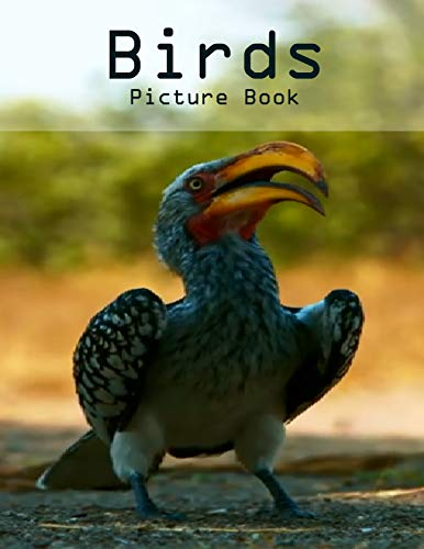 Birds Photography Photo Book: A picture book Gift for Human (Beautifull Birds Photo Book) V1