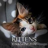 Kittens Calendar 2022: September 2021 - December 2022 Monthly Planner Mini Calendar With Inspirational Quotes