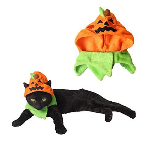 Orgrimmar Halloween Pumpkin Cat Hat Cat Cosplay Costume Cap Kitty Cat Collar Costume