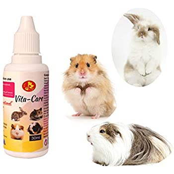 Pet Care International (PCI) Vita-Care Drop to Provide Essential Vitamin and Minerals for Healthy Hamster, Rabbit, Guinea Pig, Hedgehog, Sugar Glider etc Healthcare (Pack of 2) (30ml)