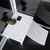 logozoe No tóxico con rampa de diseño de Escalera de Escalada, Plataforma de Material de Calidad, para acuarios para Tortugas acuáticas