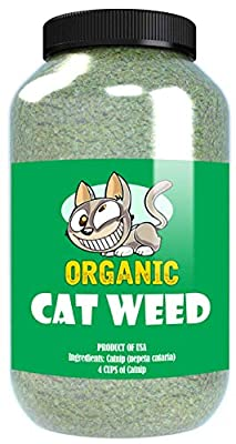 Cat Weed Organic Catnip has Maximum Potency Premium Blend Nip That Your Cats to Go Crazy Over (4 Cups)