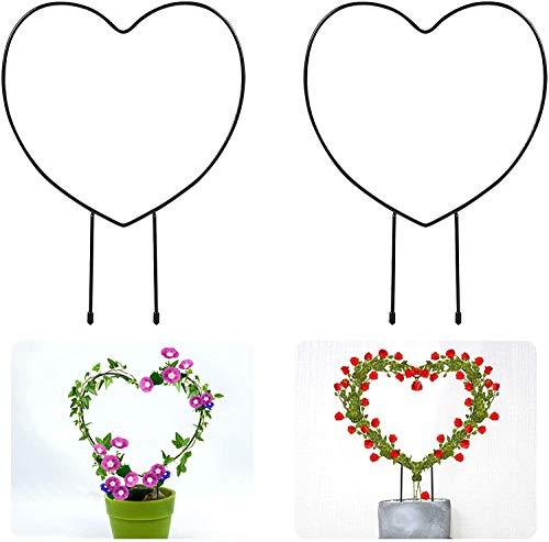 Rankgitter aus Metall, für Kletterpflanzen, 33 cm, Eisen, Rankhilfe, Rankdraht, Rankhilfe für Topfpflanzen, Blumen im Innenbereich, Pflanzenstütze, Herz, 2 Stück