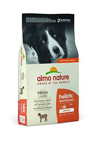almo nature Holistic Maintenance Medium con Agnello Fresco - crocchette Premium per Cani Adulti con Carne Fresca - specifico per Cani di Taglia Medium - No OGM - Sacco 12kg