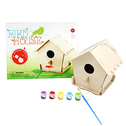 Painting Bird House