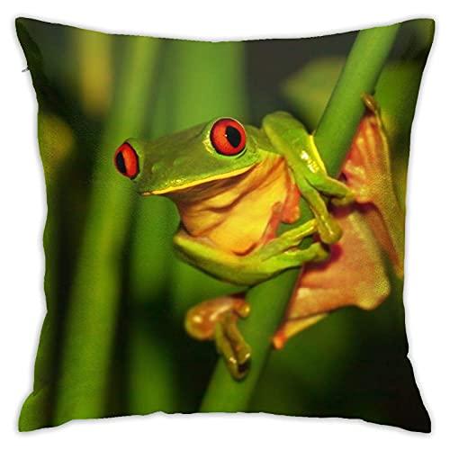 Fundas de almohada decorativas cuadradas fundas de cojín con cremallera, pequeñas ranas verdes con ojos rojos sentados en plantas exóticas, naturaleza salvaje de Costa, fundas de cojín suaves