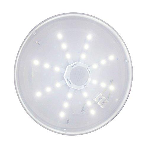WINOMO - Lámpara de techo LED blanca de ahorro de energía, repuesto para ventilador de techo, lámpara AC220 V, 12 W, 960 lm, 6000 K – 6500 K
