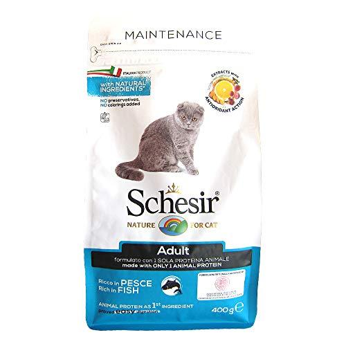 Schesir Cat Pesce - 400 Gr