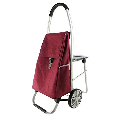 HIGHKAS Tragbarer Sitz-Trolley mit tragbarem wasserdichtem Stoff, 60 x 100 cm, Rot