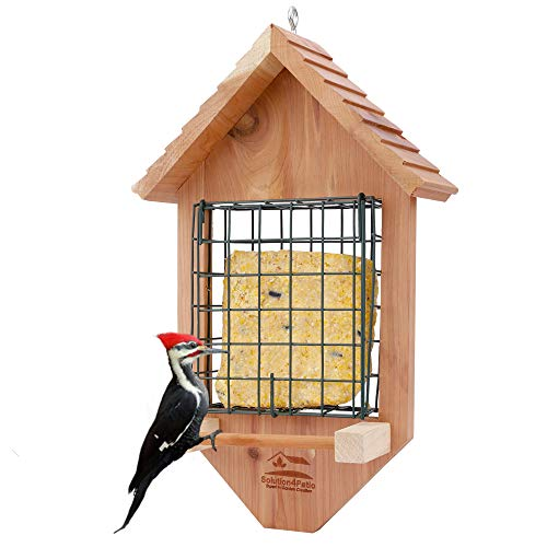 Solution4Patio USA Cedar Tail Prop Suet Bird Feeder with One Perch Clasp Suet Cage for Squirrel Proof Suet Cake Holder for Pileated Woodpecker Downy Woodpecker Nuthatch Chickadees etc