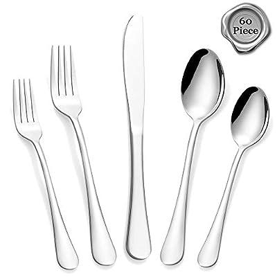 Stainless Steel Silverware Set, 60-Piece Silver Flatware Set, Modern Eating Utensils Cutlery Set for 12, Includes Dinner Knives/Spoons/Forks, Mirror Polished, Dishwasher Safe