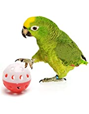 The Pets Company Bird Interactive Bell Ball, Bird Toy for Parakeet, Cockatiel, Budgerigar, Parrots, 1.5 Inches, Medium, (Pack of 2)