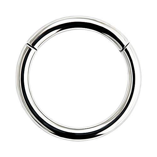 AZARIO LONDON 16 Gauge - 7MM Diameter Grade 23 Solid Titanium Hinged Segment Nose Ring Septum Piercing Jewellery