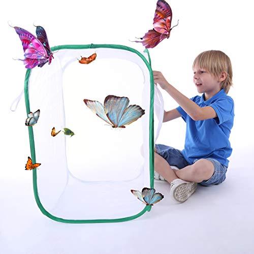 PHYNEDI Käfig für Insekt, Terrarium Pop-Up Schmetterlingskäfig mit 5 Seitenteilen für Schmetterlinge züchten, beobachten Insekt