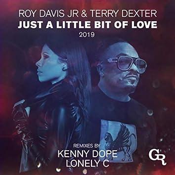 Just A Little Bit Of Love 2019