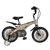 Maxiaoyun Bicicleta de Spinning Bicicleta Deportiva con estabilizador en tamaño Pulgada 12 14 Edad 3+ Niño Niño Chica Bicicleta Estilo Libre Conveniente para el hogar y el Gimnasio