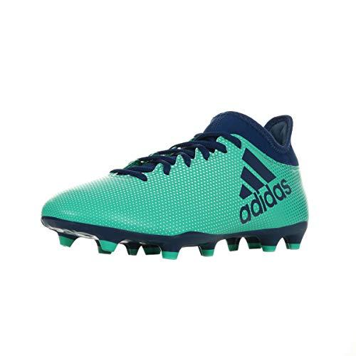 adidas X 17.3 Fg, Scarpe da Calcio Uomo, Blu (Azul/(Aerver/Tinuni/Vealre) 000), 42 EU