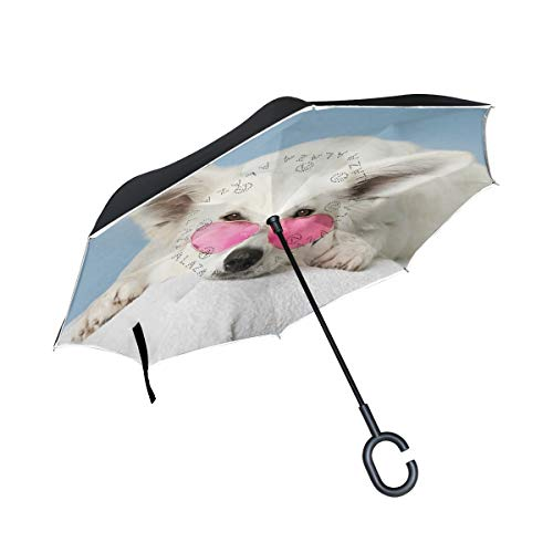 Best Bargain PNGLLD Adorable Animal White Dog Canine Inverted Umbrella Double Layer Reverse Folding ...