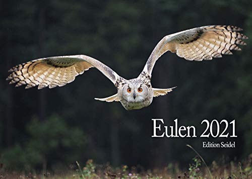 Edition Seidel Eulen Premium Kalender 2021 DIN A3 Wandkalender Tiere Wald Natur