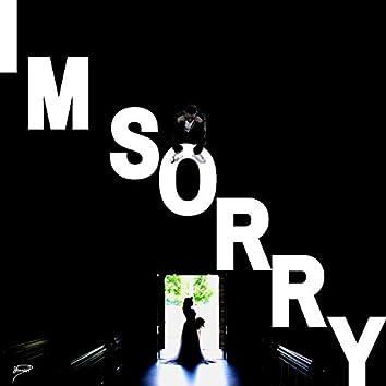 I'm Sorry (feat. ShawnPdidit)