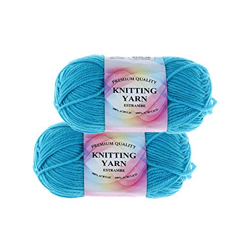 100% Premium Acrylic Yarn, 4 Ply, Snag Free for Knitting and Crochet Projects (2 Pack) (Aqua Marine)