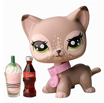 Best shorthair cat lps Reviews