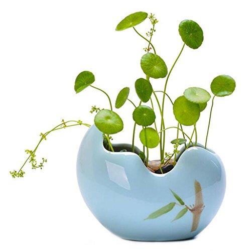 GWM Blumenständer Minimalistische Blumentöpfe und Grüns Narzissen Kupfer Töpfe Narzissen Töpfe Keramik Wasser Kulturbehälter (Farbe : Blau)