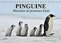 Pinguine - Watscheln im festlichen Kleid (Tischkalender 2022 DIN A5 quer): Koenigspinguine in ihrem natuerlichen Lebensraum (Monatskalender, 14 Seiten )