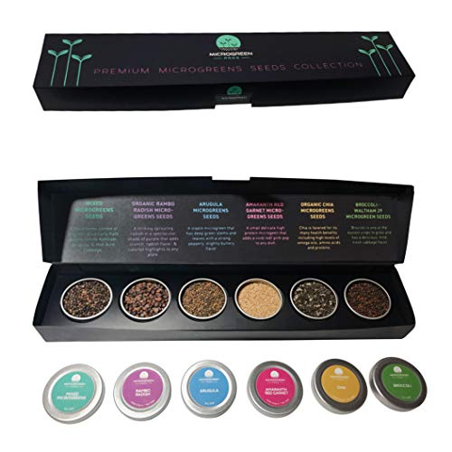 Six Premium Microgreens Seeds Kit, Over 30,000 Seeds - 100% Non GMO - Arugula, Broccoli, Mixed...