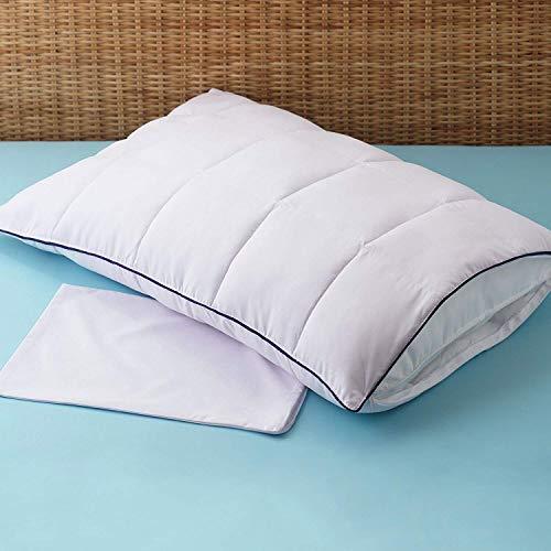 Allied Essentials Allergen Barrier Pillow Enhancer with Travel Case | Premium Quality Hypo Allergenic MircronOne White Pillow Protector (Queen)