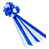 Oblique-Unique®, fiocco grande con nastro regalo, nastro decorativo per regali e sacchett...
