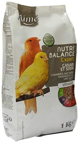 Aimé Oiseaux