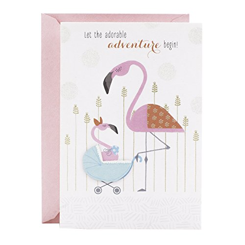 Hallmark Studio Ink Baby Card Assortment, Pregnancy Congratulations/Baby Shower/Pregnancy Support/Welcome Baby/Baby's 1st Birthday Assortment (5 cards with Envelopes)