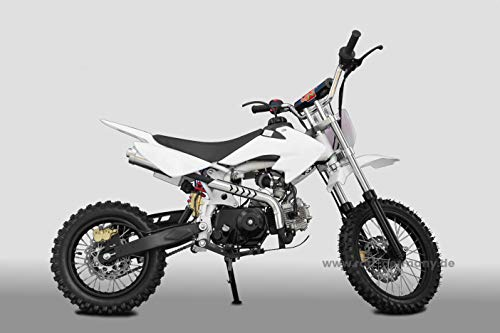 KXD Pitbike 125ccm Automatic DB607A 14|12