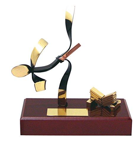 Trofeos para karate GRABADOS trofeo de karateka PERSONALIZADO figuras